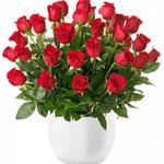 """53 rote Rosen """"ClassicRed"""" mit 50cm Länge für 24,98€"""
