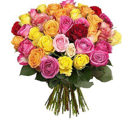 39 Shiny Roses in bunter Ausführung für nur 22,98€