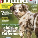 """Jahresabo """"Partner Hund"""" für 19,95€ (statt 46,80€)"""