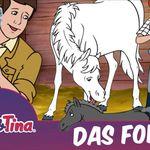 Bibi & Tina – Das Fohlen (Folge 1, Hörspiel) kostenlos