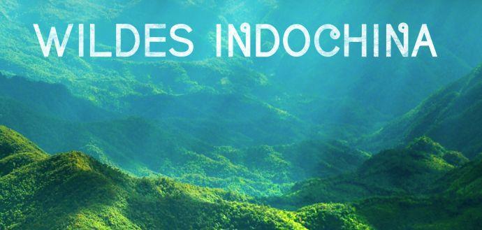 Wildes Indochina (Doku, IMDb 8,4/10) kostenlos in der 3SAT Mediathek