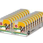 Pedigree Hundefutter 20 x 300g Schalen – 5 Sorten für je 15,99€
