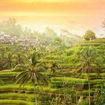 Bali-Rundreise: 14 ÜN inkl. Frühstück, geführte Ausflüge, Transfers und Flüge ab 1.179€ p.P.
