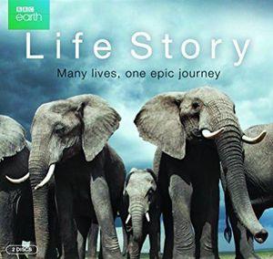 Life Story (Doku, IMDb 9,1/10) kostenlos in der ARD Mediathek