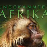 Unbekanntes Afrika (Doku, IMDb 8,9/10) kostenlos in der 3SAT-Mediathek