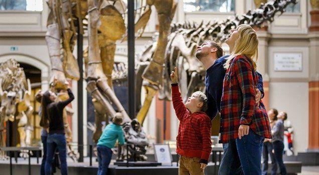 Jeder erster Sonntag im Monat freier Eintritt ins Berliner Museum für Naturkunde