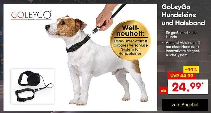 GOLEYGO Set aus Leine & Halsband ab 24,95€ aktuelles Höhle der Löwen Angebot