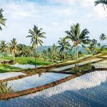16 ÜN Inselhopping in Indonesien in 4*- & 5*-Hotels inkl. Frühstück, Transfers, Exkursionen & Flüge ab 1.729€ p.P.