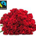 37 rote Rosen für 22,98€ mit Fairtrade