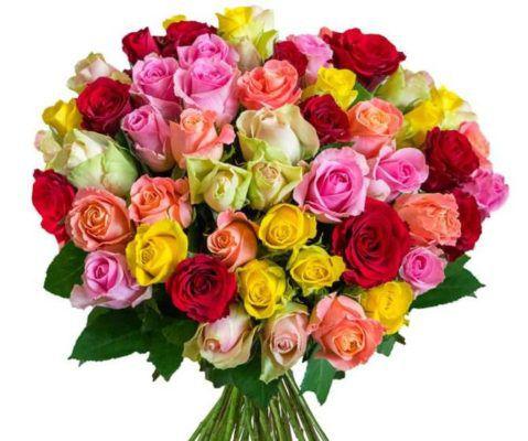 HappyRoses Blumenstrauß mit 50 bunten Rosen für 24,99€