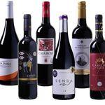 6 Flaschen Wein Probierpaket Tempranillo (teils prämiert) für 35,94€