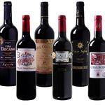 6 Flaschen Rotwein Probierpaket mit Bestsellern für 35,94€ – alle Weine mit Gold prämiert