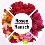 Rosenrausch:  bis 33 rote Rosen [Fairtrade] für nur 19,98€