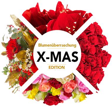Blumenüberraschung: verschiedene Blumenarrangements oder weihnachtlicher Blumenstrauß für 22,98€ (statt 45€)