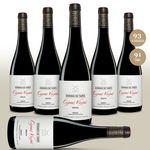 Dominio de Tares Cepas Viejas Mencia 2015 – 6Fl. trockener spanischer Rotwein für 60€