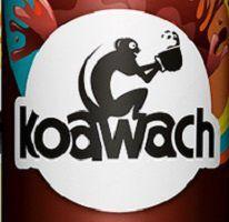 Kostenlos: koawach Drink testen