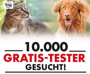 Katzen  und Hundefutter von Nutro gratis ausprobieren