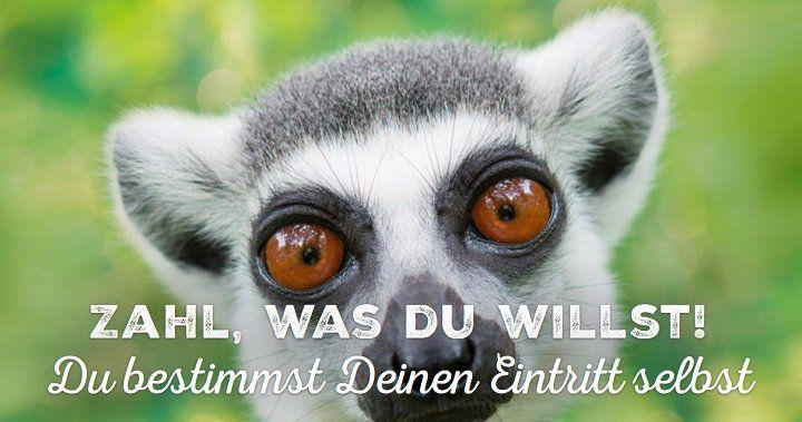 """Allwetterzoo Münster: Ab dem 15.12.2018 """"Zahl, was du willst!"""