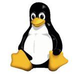 Udemy-Kurs: Linux for Absolute Beginners! vollkommen kostenlos (statt 194€)