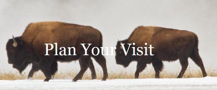Kostenlos 2020 an 5 Tagen in Nationalparks in den USA