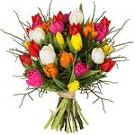 """Tulpenstrauß """"Modern Love"""" mit 15 Tulpen für 23,94€"""
