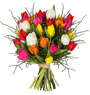Tulpenstrauß Modern Love mit 15 Tulpen für 23,94€