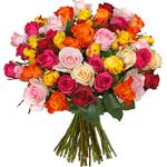 Vorbei! 🌹 50 bunte Rosen mit 50cm für 17,98€ inkl. Lieferung – nur 0,36€pro Rose!