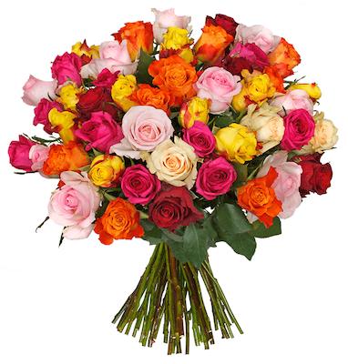Vorbei! 🌹 50 bunte Rosen mit 50cm für 17,98€ inkl. Lieferung   nur 0,36€pro Rose!