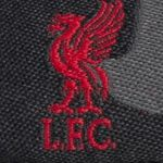 Liverpool FC Warrior Graphic Herren Fan T-Shirts für je 4,99€ zzgl. VSK