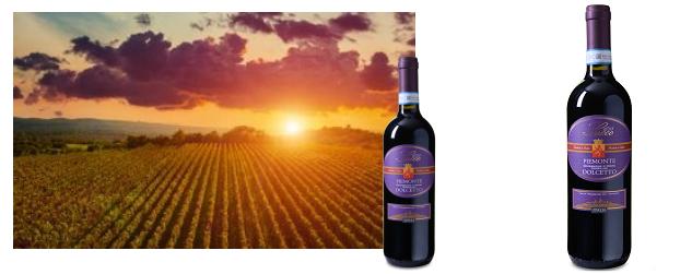 12 Flaschen Rotwein   Sacco   Dolcetto Piemonte DOC für 49,92€ (statt 72€)