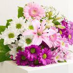 """Zum Muttertag: Blumenstrauß """"Beste Mama"""" für 19,98€"""