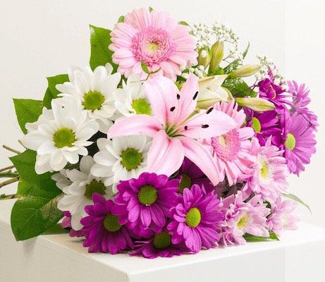 Zum Muttertag: Blumenstrauß Beste Mama für 19,98€