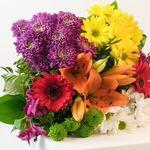 """Muttertag: Blumenstrauß """"Blütentraum"""" mit orangefarbener Lilie für 19,98€"""