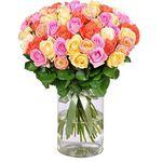 """44 bunte """"Rainbow Roses"""" mit 50cm Länge für 24,98€"""