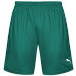 Puma PowerCat 1.10 Sport Shorts ab 3,99€ (statt 13€) – nur bis 11 Uhr