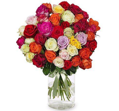 46 bunte Rainbow Roses mit 50cm Länge für 24,98€