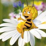 Kostenlos: Kinder Abenteuer Büchlein mit Biene Maja & Blühsamen bei Rewe