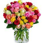 40 bunte Rosen mit 50cm Länge für 19,98€