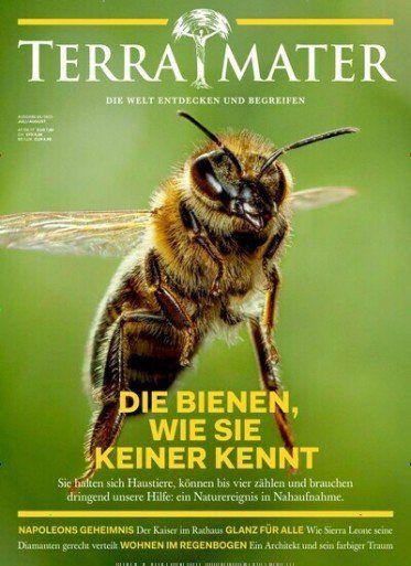 TOP! 6 Ausgaben Terra Mater für 39€ + 30€ Verrechnungsscheck