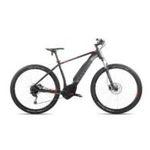Axess Rogue E-Tech 2019 E-Bike mit Bosch Motor & 500 Wh Powerpack  für 1.999,99€