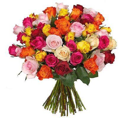 45 bunte Rosen mit 50cm Länge für 24,98€