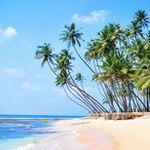 15 Tage Sri Lanka Rundreise mit Badeurlaub im 4* Hotel (94%) ab 1.489€ p.P.
