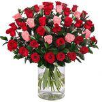 43 Rosen im XXL Rosenarrangement für 24,98€