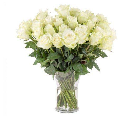 28 weiße Rosen mit 50cm für 24,98€ inkl. Versand