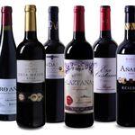 6 Flaschen Rioja Wein Probierpaket für 49,99€ – allesamt mehrfach prämiert!