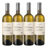 12 Flaschen Wein kaufen – 2 geschenkt bekommen 🍷 z.B. Santa Cristina Lugana nur 8,25€ (statt 12€)