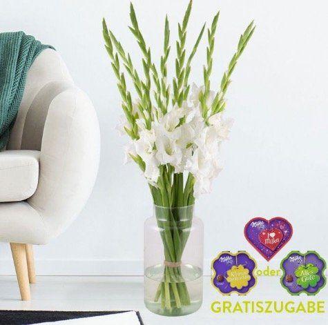 10 weiße Gladiolen + Milka Pralines für 19,90€