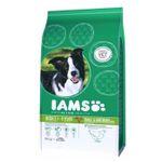 Top12: Katzen und Hundefutter-Sale – z.B. AMS Pro Active Health 9kg nur 24,12€