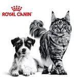Kostenlos: Royal Canin Hunde-oder Katzenfutter