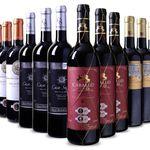Spanisches Medaillenpaket mit 12 Flaschen Wein für 49,88€